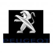 Peugeot Dash Kits